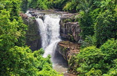 Ubud Tour - Bali - BaliWisataTravel.com