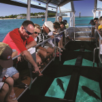 glass-bottom-boat watersport tanjung benoa
