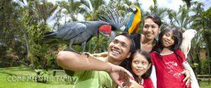 Bali Bird park - BaliWisataTravel.com