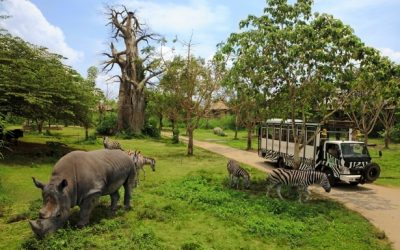 Bali Safari and Marine Park - BaliWisataTravel.com