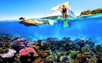 Pulau Menjangan, Wisata Bahari Dengan Spot Terbaik di Bali